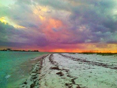 Florida, Mare - Immobili sulla spiaggia da acquistare o da affittare